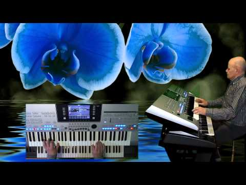 Blue Orchid © VRmusics Shadows Style