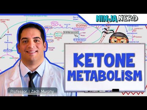 Metabolism | Ketone Metabolism