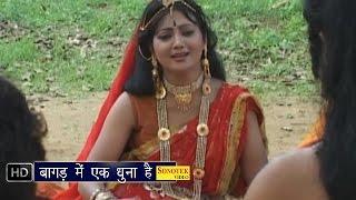 Bagad Me Ek Dhoona Hai    बागड़ में एक धुना है     Jaharveer Gogaji Bhajan