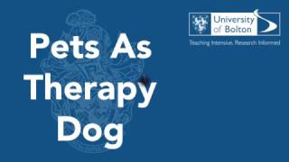 Pets As Therapy Dog - Zara at the University of Bolton