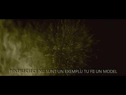 Seek - Viata