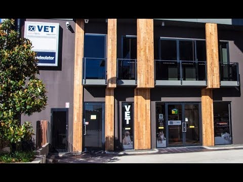 Gold Coast Veterinary Clinic | Pet Care | ExcelVets
