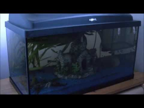 aquarium filter reinigen youtube. Black Bedroom Furniture Sets. Home Design Ideas