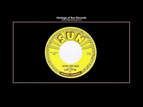 (1954) Sun 206-A ''Cotton Crop Blues'' James Cotton