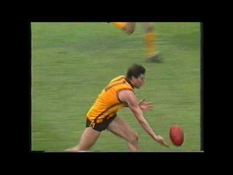 1992 AFL Goals of the Year