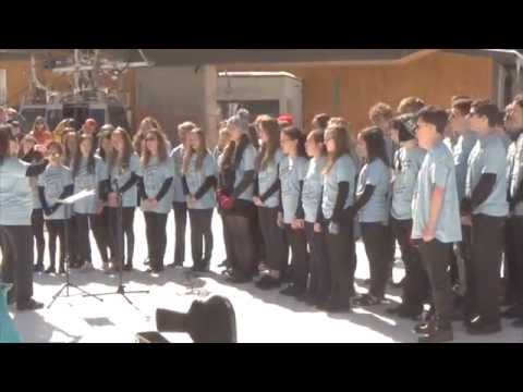 Hayes School Music Tour 2015 official video