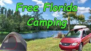 Searching For Best Fŗee Camping in Florida