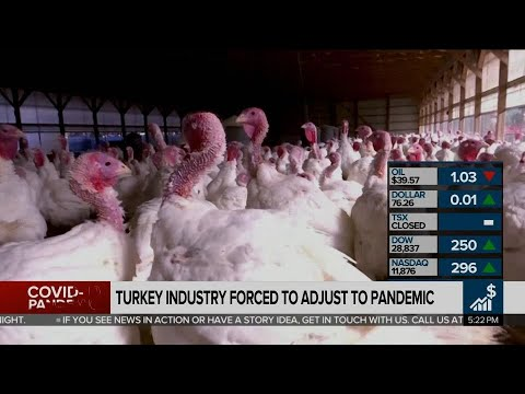 Business Report: Turkey industry hit hard by pandemic