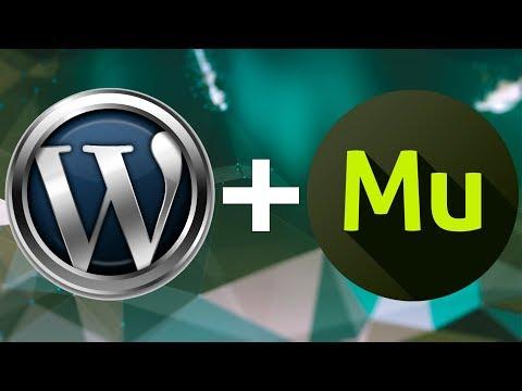 Обзор как натянуть шаблон Adobe Muse на CMS WordPress