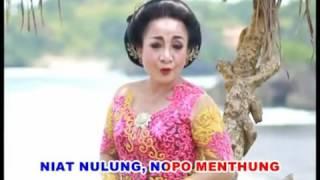 Download Video Lare Gunung Minul   YouTube MP3 3GP MP4