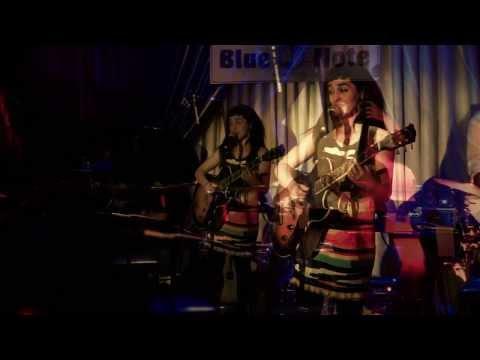Green Finch and Linnet Bird - Camila Meza