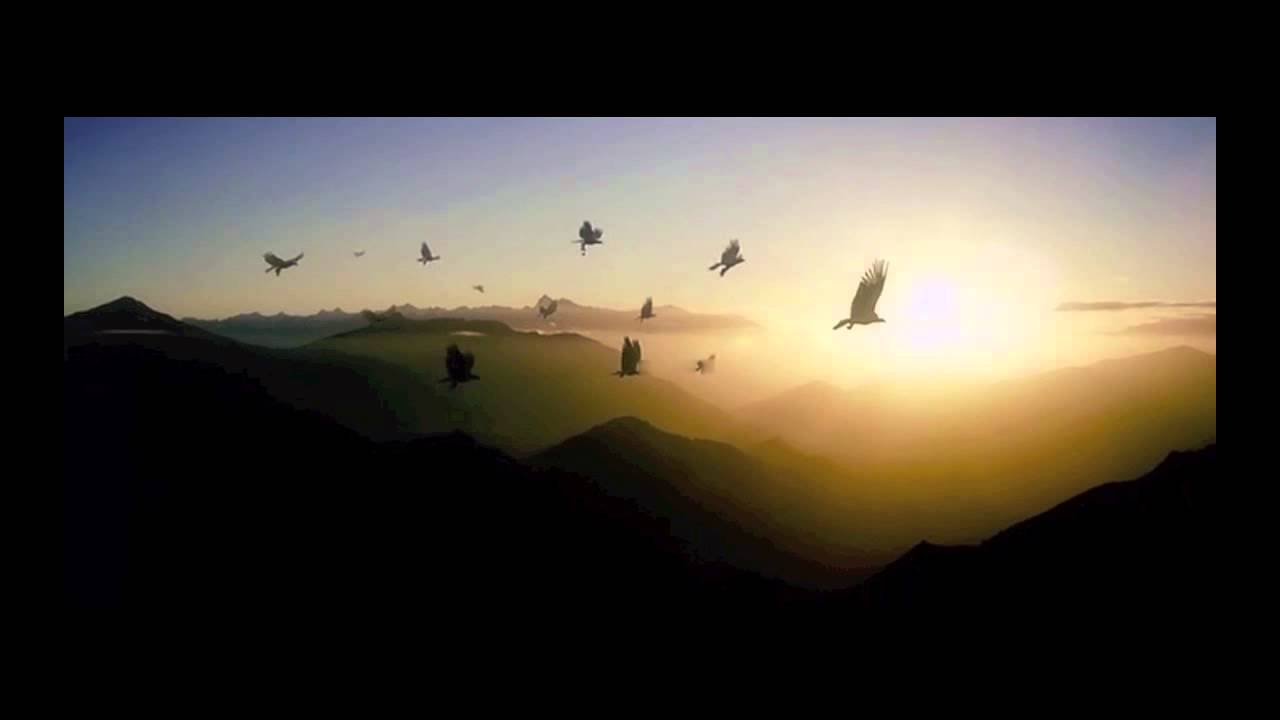 Wallpaper Hd Lord Of The Rings Howard Shore Flight To The Carrock The Hobbit An