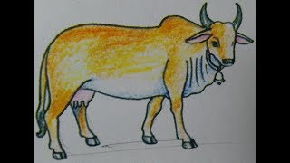 How To Draw a cow Step By Step very Easy