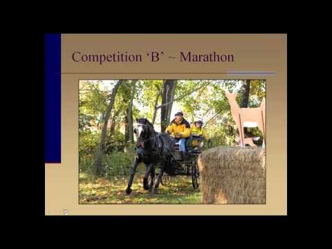An Introduction to Combined Driving - Andy Marcoux
