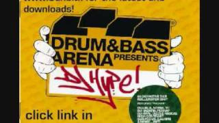 Drum & bass arena presents dj hype cd 2 trk 24