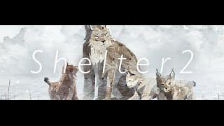 Shelter 2 - Full Soundtrack