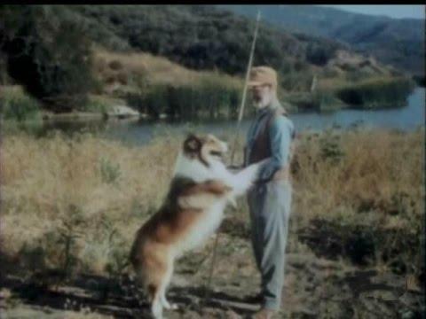 Lassie  Episode 447