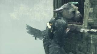 The Last Guardian Trico