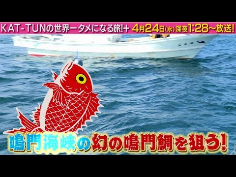 KAT-TUN KAT-TUNの世界一タメになる旅+ CM スチル画像。CM動画を再生できます。
