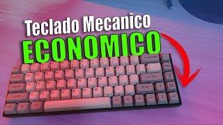 EL MEJOR Teclado Mecánico ECONOMICO?