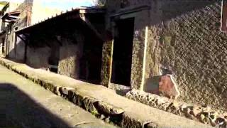 Samnite House At Herculaneum Down To The House In Opus Craticium