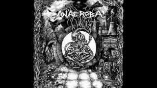 ANAEROBA - Over The Walls And Borders [FULL DEMO 2008]