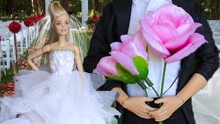 Барби будет невестой? Знакомство с парнем Скипер.