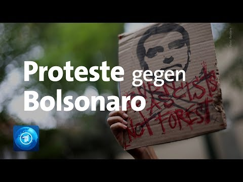 Brände Im Amazonas-Regenwald: Bolsonaro Kündigt Militäreinsatz An