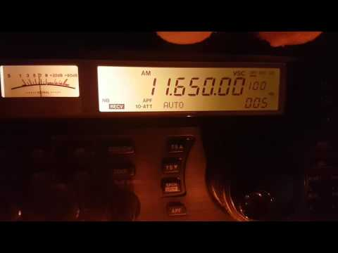 Radio Tamazuj via Madagascar 11650 KHz Shortwave