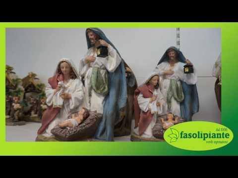Fasoli Piante Novara Orari.La Magia Del Natale Fasoli Piante Youtube