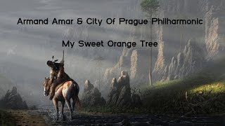 Armand Amar & City Of Prague Philharmonic | My Sweet Orange Tree 2013