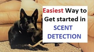 How to Train a Dog to Find ANY scent (K9-1.com)