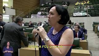 DEFESA DA PEC 3   03 04 19