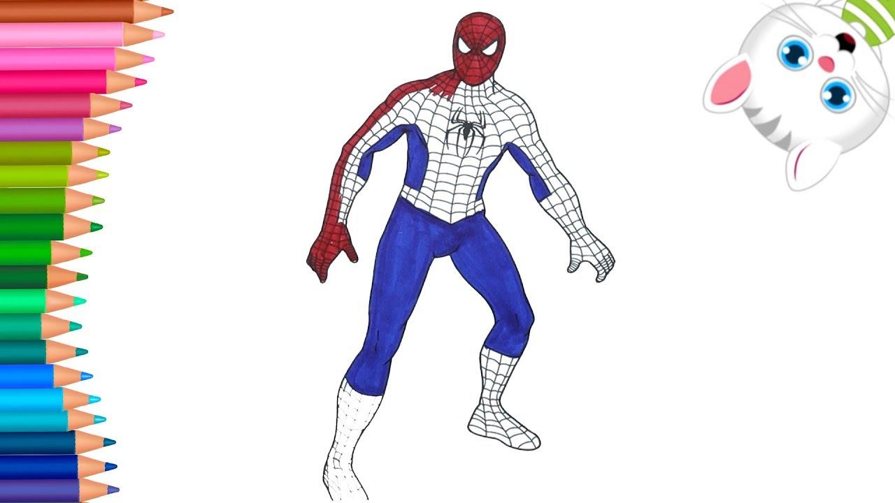 Orumcek Adam Spiderman Boyama Nasil Yapilir Nasil Cizilir
