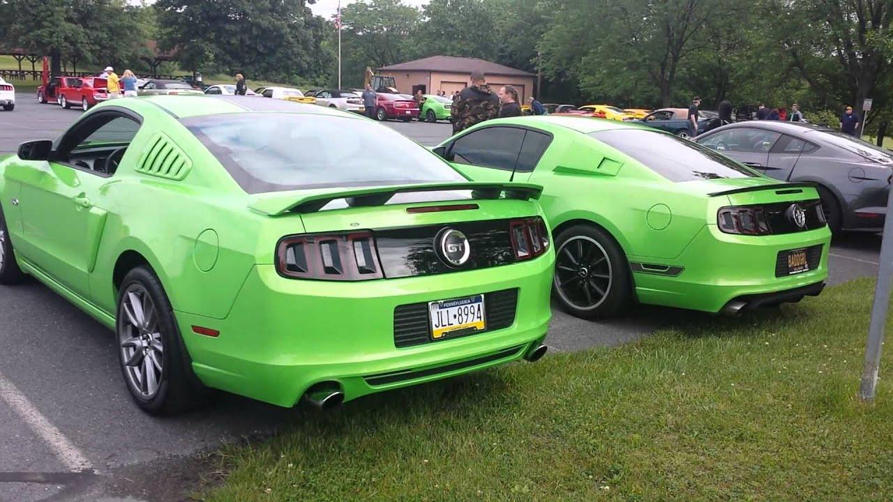 2014 Mustang GT 5.0 premium & 2013 BOSS 302 Walk a - YouTube