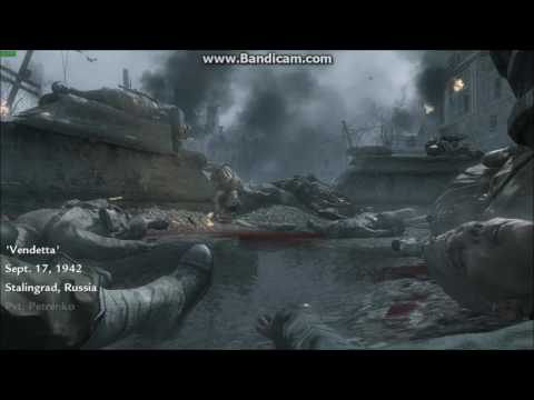 How To Use Cheats In COD WAW Campain