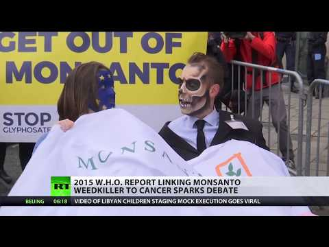 Probably carcinogenic: Republicans threaten to cut WHO funding for research on Monsanto's weedkiller