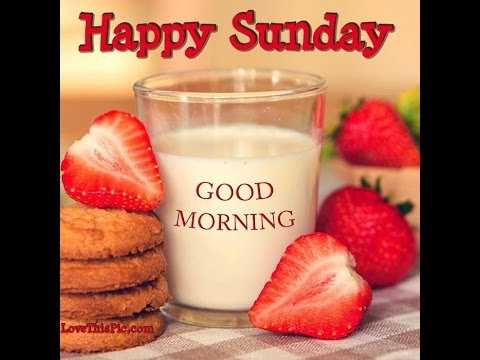 Good Morning Happy Sunday Pictures Photos Images For Whatsapp