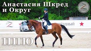 Анастасия Шкред и Округ. Конный спорт. ППЮ - 64,722%