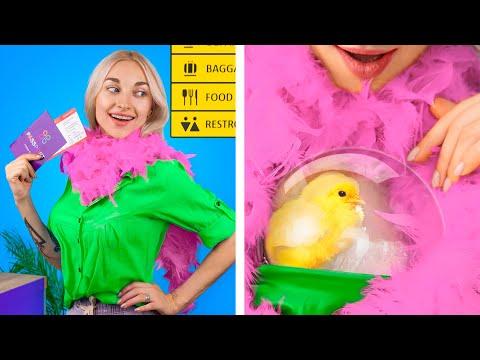 Как пронести животных в самолёт /  Смешные трюки с животными