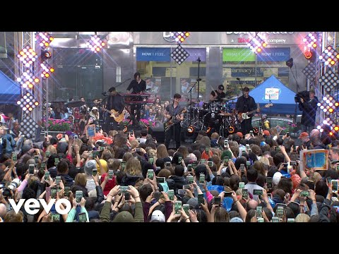 Shawn Mendes  In My Blood  On The Today Show
