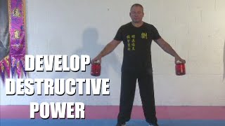 Strength Conditioning and Iron Palm | Sifu Steven Burton