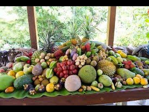 Tropical Fruit Tree Nursery Tour
