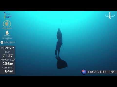 AIDA WCh Roatan 2017 David Mullins CWT  GOLD