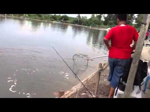 Juru fishing