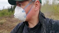 vblog: Metsän boorilannoitus soluboorilla käsin levittämällä