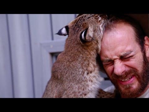 Baby Bobcat Experience! Kamp Kenan S3 Episode 17