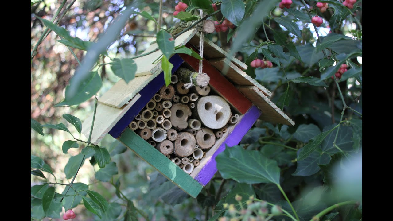 Diy insect hotels 4 different designs for hanging in for Home made sauna designs
