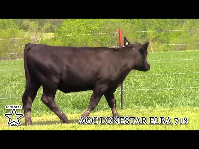 AGC Lonestar Elba 718