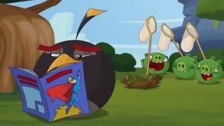 Злые птички - Энгри Бердс - Псевдояйца (S3E18) || Angry Birds Toons 3 season
